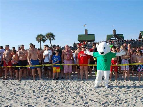 The annual Polar Plunge occurs every New Year's Eve Day, join hundreds!