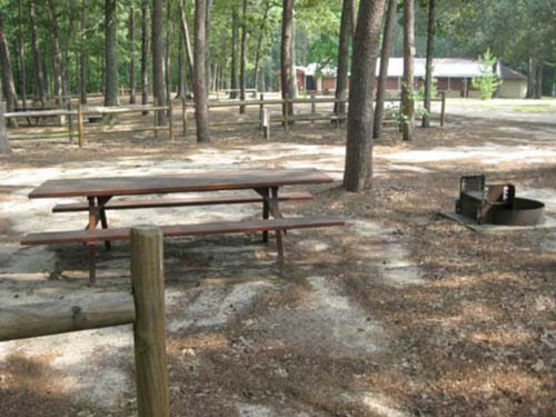 All campsites come with a picnic table and fire ring