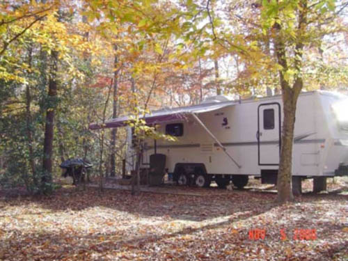 Most campsites are wooded