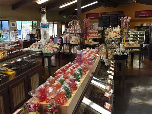 Fresh baked pastries,  homemade pies,  ice cream,  fudge,  chocolate and more