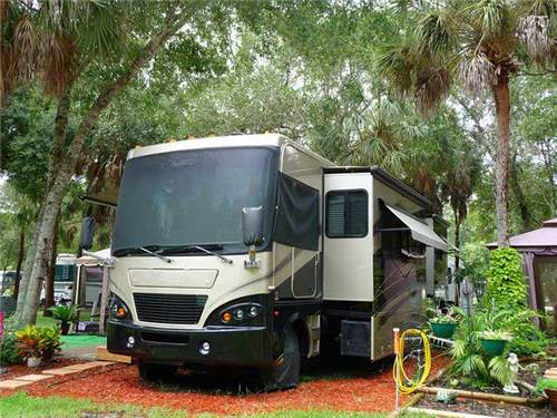 Large wooded RV sites