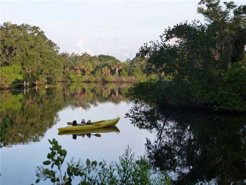 Kayaking the backwaters