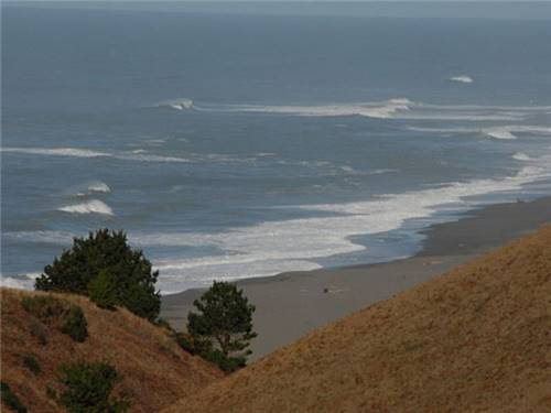 The redwood coast beckons you