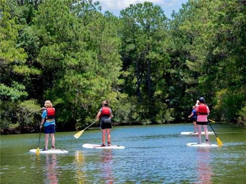 Enjoy fresh water lakes and tidal creeks.