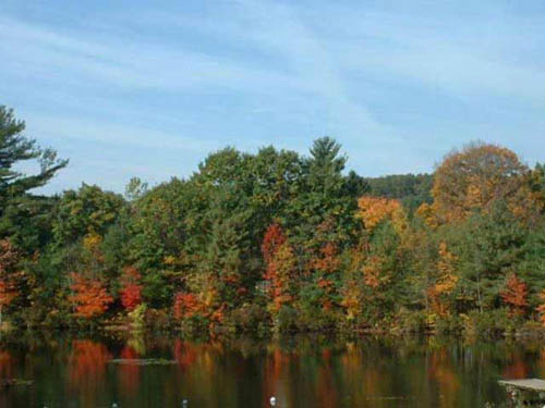 A family campground in the PA mountains. Relax and fish in our lake or hike on our walking trails.
