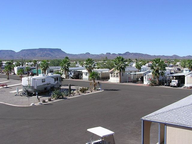 Holiday Palms RV Park in Quartzsite, AZ