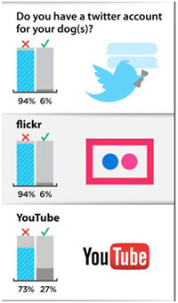 Twitter and Facebook chart