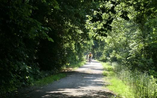 Sundermeier RV Park landscape
